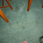 Stains on carpet red could be blood?
