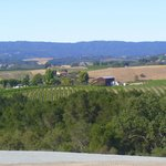View from the front of The Canyon Villa toward Terry Hoage Vineyards