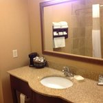 Hampton Inn and Suites Alexandria resmi