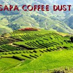 Sapa Coffee Dust