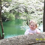 Beautiful granddaughter and dogwood background