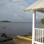 view from deck - low tide
