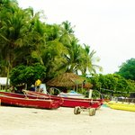 Pura Vida Princess Catamaran Cruises