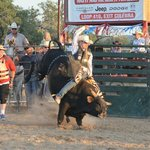 Bull riding at Lightning Ranch Rodeo
