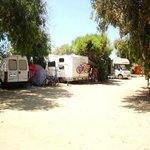Photo of Camping Internazionale Nettuno