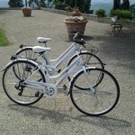 Tuscany Cycle - Bike Rentals & Tours