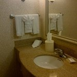 Φωτογραφία: Hilton Garden Inn Kansas City