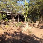 Photo of Chaparri Ecolodge