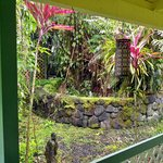 Coconut Cottage Bed & Breakfast Foto