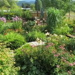 Photo de Garden View Cottage Bed & Breakfast