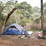 Camping is one of the most popular activities at the park.