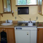 Shaving sink and kitchenette