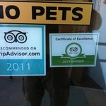 this took the cake - 2013 certificate of excellence?!
