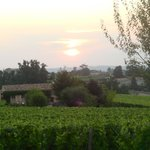 View across the Vineyards towards St Emilion