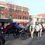 Horse & carriage ride