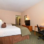Foto BEST WESTERN PLUS Rocket City Inn & Suites