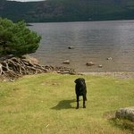 Lovely walk to Dewent Water, 30mins from hillside