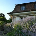 Photo de Lavauxhomestay, Bed and Breakfast