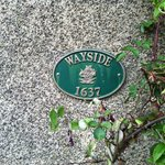 Wayside Guest Accommodation and Whisky Barn의 사진