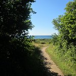 trail to the beach