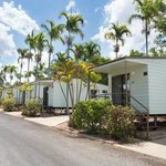 Discovery Holiday Parks - Argylla: cabins amongst palm trees