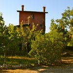 Foto van La Torre Rossa Bed & Breakfast