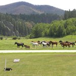 Foto de High Country Guest Ranch