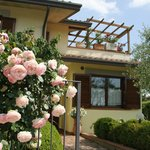 Photo de Il Giglio Bed and Breakfast