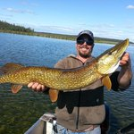 "36"" Northern Pike"