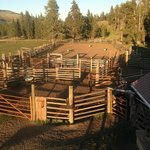 Nine Quarter Circle Ranch Foto