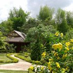 Peaceful bungalow in the charming garden and tropical forest surrounding.