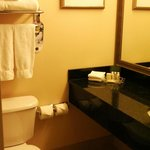 Φωτογραφία: Holiday Inn Toronto Airport East