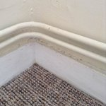 hairy skirting boards in bathroom