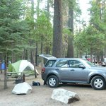 Hodgdon Meadow Campground resmi