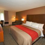 Comfort Inn Latham/Albany North Cohoes