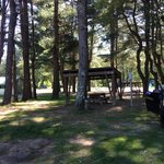 Foto di Eastern Slope Camping Area