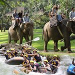 Bali Adventure Tours - Day Tours