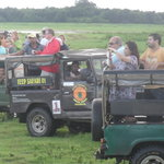 Select Sri Lanka Day Tours Foto