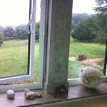 Every window had a really fab countryside view, including the bathroom!