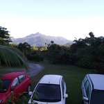 The Epiphyte Bed and Breakfast Foto