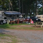 Nice and roomy campsites