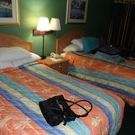 Travelodge Tampa/ West Of Busch Gardens resmi
