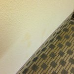 Photo de Travelodge Troutdale / East Portland / Gresham