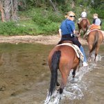 Horseback riding up in Cooke City!  Great family run business.