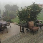 Morning Fog on the back deck
