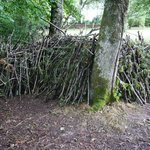 A shelter built by teenage resident(s?). Material and support provided by Nigel.