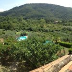 overlooking the garden and swimmingpool from balcony Goia