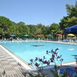 Camping Residence Il Tridente의 사진