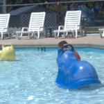 Kiddie Pool: 2 water rockers