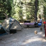 site 83, Princess Campground, Sequoia Natl. Forest
